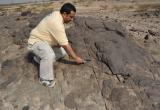 مطلوب جيولوجي للسعودية